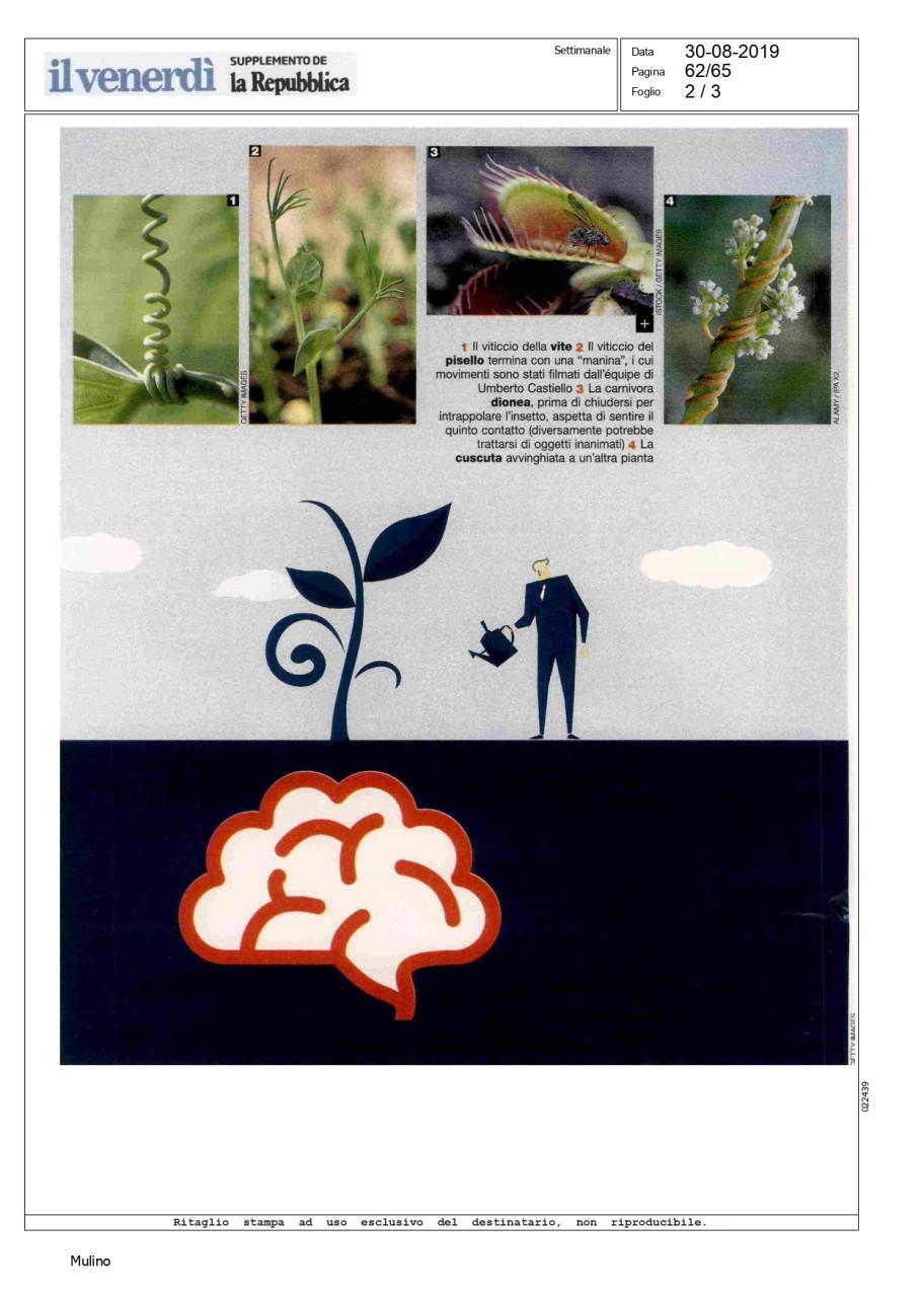 Castiello, La mente delle piante, Il Venerdì di Repubblica, 30082019_page-0002